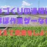 米づくりの過程は、ほぼ作業ゲーな件【考えて農業をしよう】