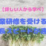 【体験談】農業研修を受けると成長スピードが速い【詳しい人から学べ】